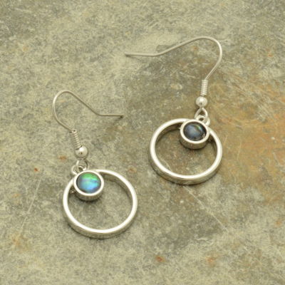 Paua Disc Earrings